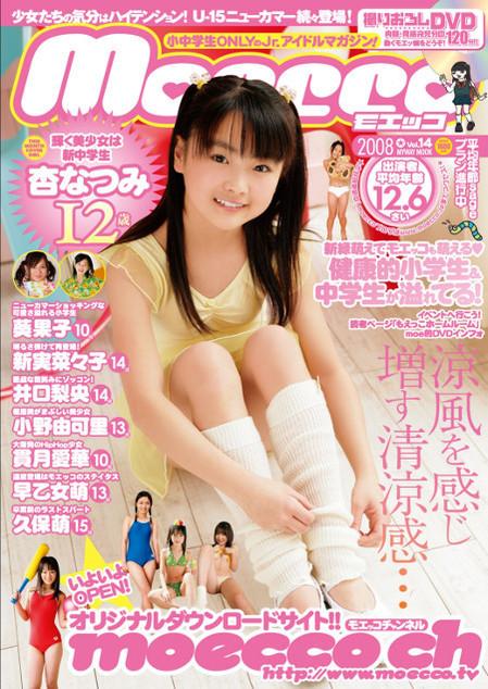 moecco(モエッコ) vol.14 動画+PDF書籍セット | お菓子系.com